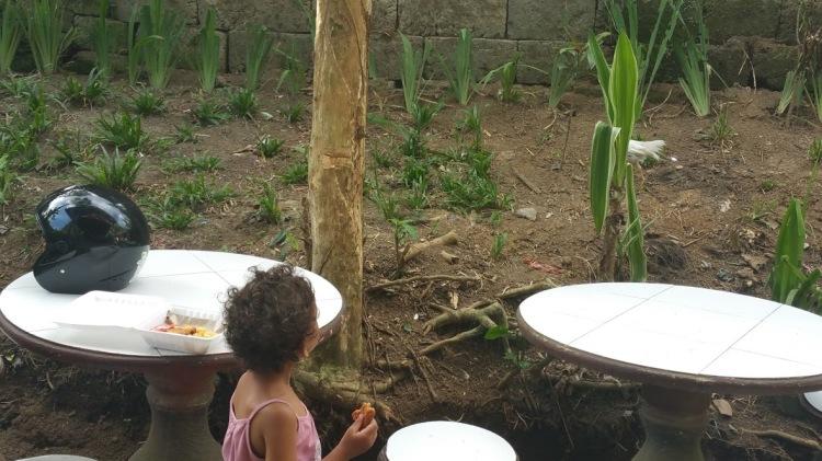 Ubud_keliki leyna et poules