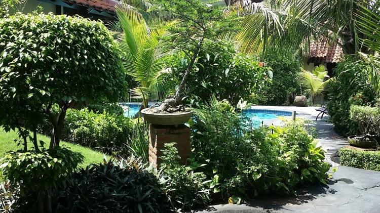 Yogyakarta_Duta green