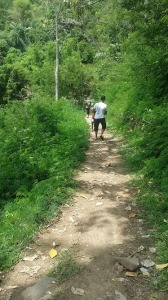 Moni_chemin vers cascade