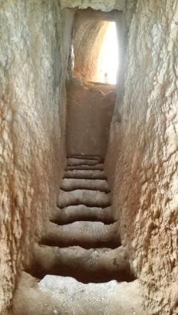 Carvhalo escalier