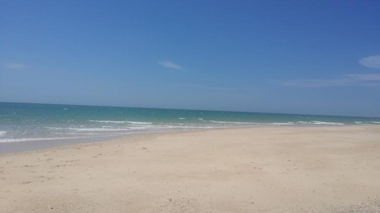 Culatra plage 2