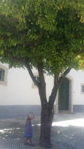 Faro orange