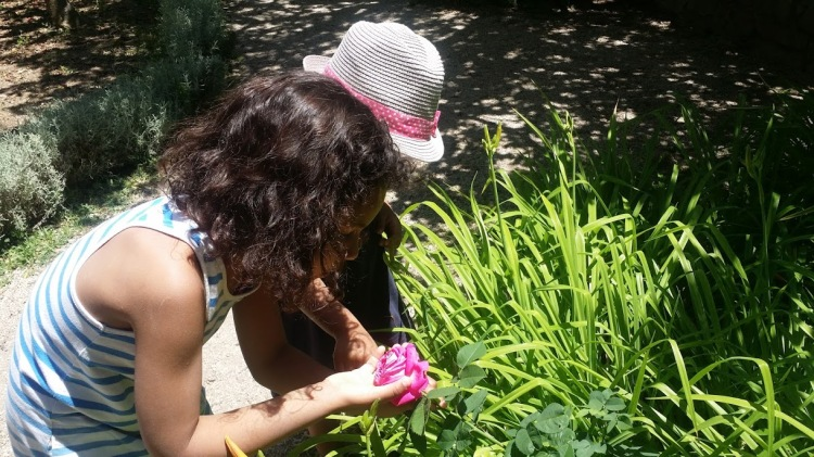 Tavira jardin 2