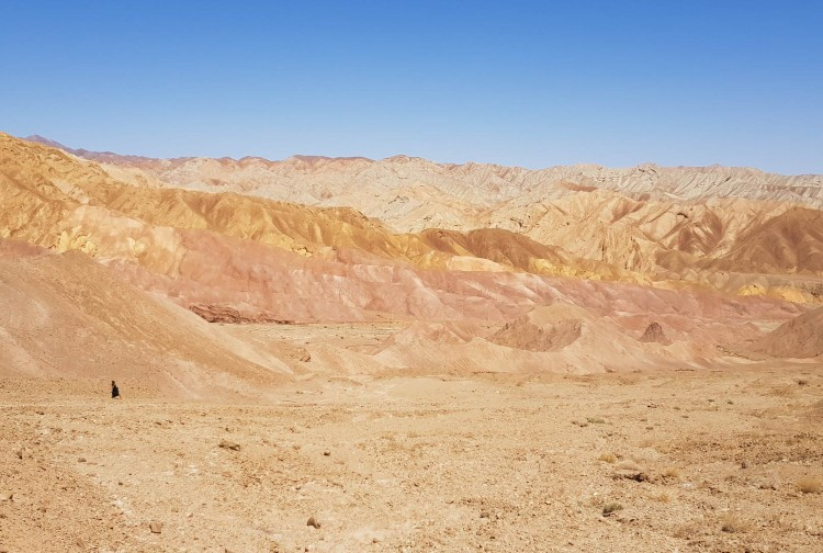 Kerman mountain colored 2