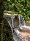Lambir Hills 2